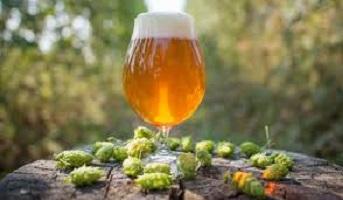 IPA la cerveza de la vuelta al mundo